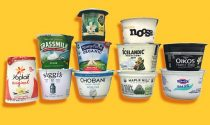 10 Best Store-Bought Yogurts For a Healthy Tummy And The Brands to Avoid