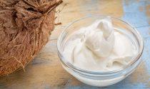 Coconut Milk Yogurt Recipe